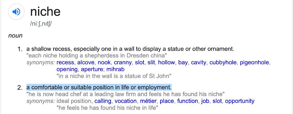 Meaning of Niche - A comfortable or suitable position in life or employment.